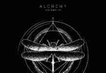 Tchami CONFESSION Alchemy IV