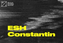 Constantin 2U Tiesto Musical Freedom